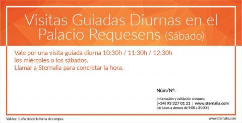 Visita Guiada Diurna en el Palacio Requesens