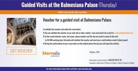 Guided tour at the Balmesiana's Palace