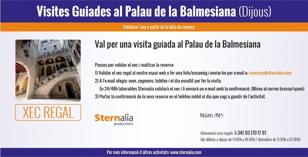 VISITES GUIADES al Palau de la Balmesiana