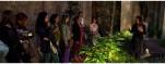 Visita guiada con copa de cava en el Palacio Requesens